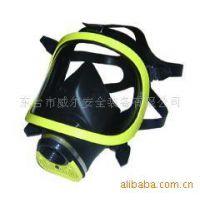 优质供应威尔消防防护全面罩