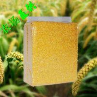山西特产小米2013年有机小米绿色优质营养补品小黄米500克贡米
