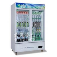 两门冷柜型号BC-538C2Z 双门冰柜 便利店展示柜 广州东洋冰柜批发