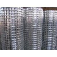 冷热镀锌电焊网|热镀锌电焊网|创研丝网
