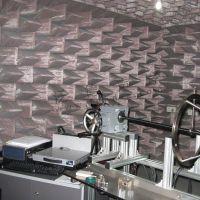 消声室定制设计 天合汽车(TRW)消声室工程