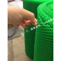 【贵州凯里】塑料平网厂家@圆孔菱形孔大小孔塑胶网@0.8厘米小孔雏鸡养殖脚垫网