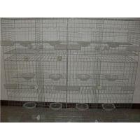 贵州肉鸽养殖笼具养殖场联排3层镀锌钢丝鸽子笼价格