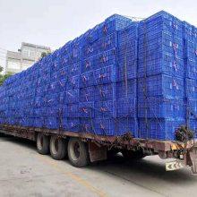 重庆市水蜜桃筐 多种颜色可选 PE材质 厂家直销