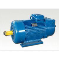 江西特种YZRDF280-8/32;55/13KW强迫风冷双速电机 特殊电机维修