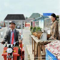 刘能款太阳能电动车/载重电动三轮车/电动三轮车/老年代步车