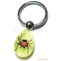 广告促销活动赠送礼品 昆虫琥珀夜光钥匙扣 精美别致 广西***专业