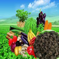 瓜果专用有机肥|瓜果专用肥|有机肥厂家直销|价格低质量好