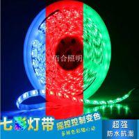 5050七彩60珠滴胶灯带+44键控制器  RGB防水条LED装饰