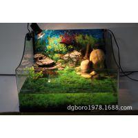宝龙经典水龟饲养玻璃缸龟池豪华生态缸水族缸鱼缸爬虫饲养缸