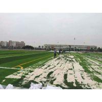 人造草皮 专业生产各类人造草坪 厂家直销铺设足球场人造草皮