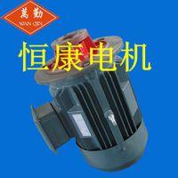 热销推荐CB-B齿轮泵电机 三相异步电动机