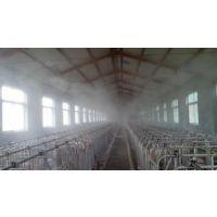 养殖场喷雾降温消毒系统请找东佳强环保科技公司