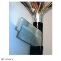 ZR-DJFP2VFRP2-22阻燃铠装计算机屏蔽控制电缆-中燃能源