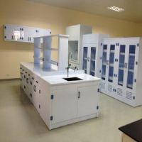 【PP产品】PP通风柜 PP药品柜 PP酸碱柜 PP实验室配