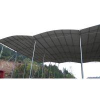 成都彩钢钢结构大棚 工地料棚