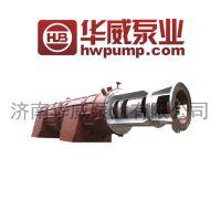 熔盐轴流泵 轴流熔盐泵 性能稳定 售后完善 华威