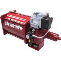 意大利servovalve重型液压缸进口液压缸