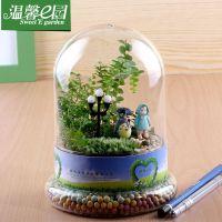 苔藓微景观生态瓶 大自然温馨的爱 创意迷你植物盆栽