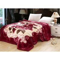 厂家定做双层拉舍尔毛毯 加厚印花拉舍尔毯 童毯