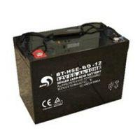 全新包装赛特蓄电池BT-HSE-80-12