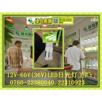 绿鸟照明-36VLED日光灯管生产厂家