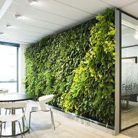 仿真植物背景墙草坪绿化墙体地毯草皮假叶子挂墙绿植工程装饰绿色 优嘉工艺