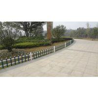 广东揭阳hysw 绿化护栏隔离带公园草坪护栏