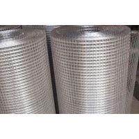 环航4寸不锈钢电焊网|优质不锈钢电焊网