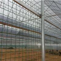 浸塑铁丝网&养殖围栏网&养殖常用的价格便宜的铁丝网