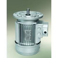 上海德东电机厂家直供小功率电动机 YS7124 B5 0.37KW