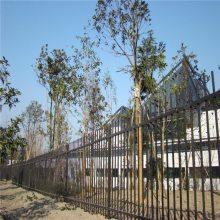 惠州景区防护栏杆/茂名楼盘建筑锌钢护栏/公园围栏围墙价格