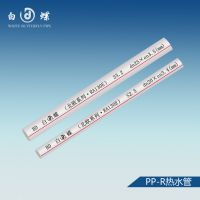 PPR管十大品牌 PPR管批发 PPR管规格 白蝶PPR热水管