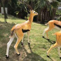制造非洲羚羊模型出租,羚羊模型租赁,鲸鱼岛娱乐设备出租租赁