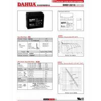 大华蓄电池DHB12260