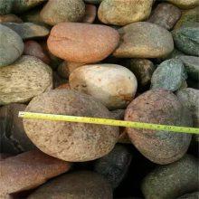 电厂变压器下面用鹅卵石 石家庄永顺5-8cm天然鹅卵石批发