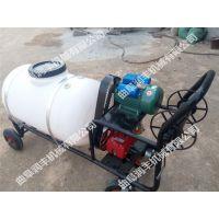 自走式杀虫喷雾器 大型植保机械 远程高压打药喷雾器