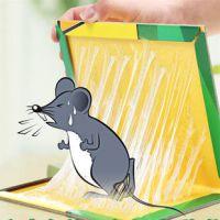 上海粘立绝工厂直销粘鼠板 老鼠板 质量保证 价格低廉加厚纸板 强力胶水