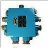 JHH-1/60-20S (六通)A4 B2矿用本安电缆接线盒