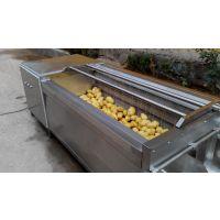 供应宜福达Yq-21型胡萝卜毛棍清洗机/洗胡萝卜机