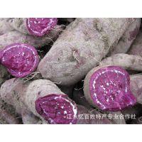 零风险忆百姓特产批发 紫皮紫心 粉甜可口优质越南紫心红薯