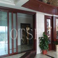 OTSE 液晶显示层站操纵箱高档钛金不锈钢轿厢别墅电梯
