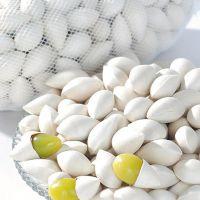 林木种子厂家直销高品质白果树苗木园林绿化精选优质银杏种子批发