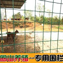 养殖荷兰网 养鸡场围栏 绿色养殖专用铁丝网