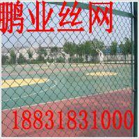 勾花护栏网生产厂家——衡水供应销量好的体育场围网