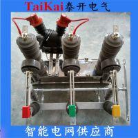 西安供应泰开电气ZW32M-12G快速永磁柱上真空开关,永磁机构带隔离带看门狗功能