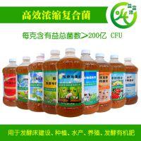 EM菌剂调制甘蔗梢喂水牛肉牛广西广东云南贵州