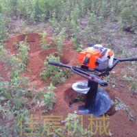植树造林挖坑机 小型便携式打眼机械 佳宸牌地钻厂家