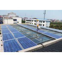 250W单多晶太阳能电池板哪家好