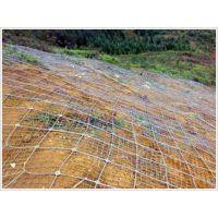 河北供应主动山坡防护网 焊接钢丝网 山体防护网 隐形防护网 丝网除沫器
